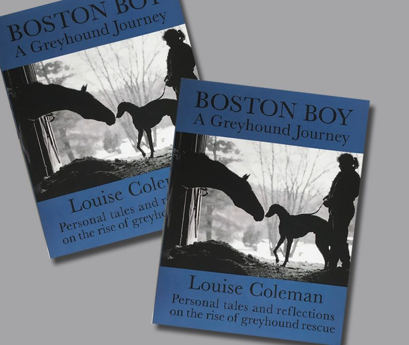Boston Boy: A Greyhound Journey Serves as a Love Letter to the Greyhound Breed
